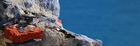 Geld op steen Stock Foto