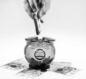 Geld in piggybox Royalty-vrije Stock Afbeelding