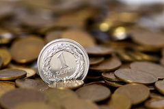 Geld PLN royalty-vrije stock foto