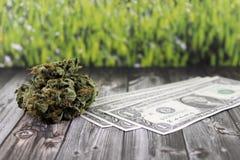 Geld uit cannabis het smokkelen wordt verkregen die royalty-vrije stock foto