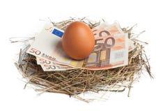 Geld und braunes Ei im Nest Lizenzfreies Stockfoto