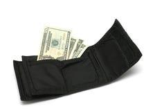 Geld und Mappe II stockfoto