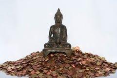 Geld und Zen lizenzfreies stockbild