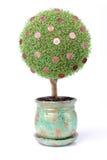 Geld wächst auf einem Baum Stockbild