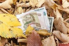 Geld wird mit gefallenen Blättern besprüht Lizenzfreie Stockbilder