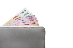 Geldbörse mit Banknoten Stockfotografie
