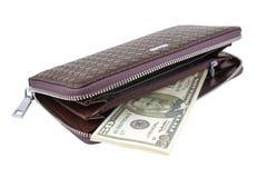 Geldbörse mit Dollar Lizenzfreie Stockbilder