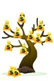 Geldbaum Stockbilder