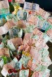 Geldbaum in Thailand Stockfoto