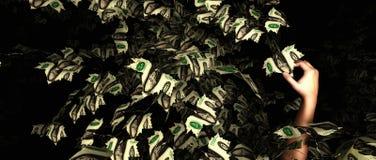 Geldbaumkonzept Lizenzfreies Stockfoto