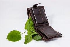 Geldbeutel mit grünen Blättern lizenzfreie abbildung