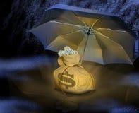 Geldbeutel unter Regenschirm Lizenzfreies Stockbild