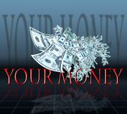 Geldflugwesen Lizenzfreie Stockfotografie