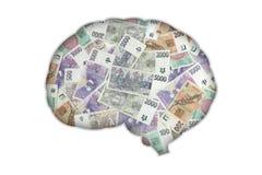 Geldhersenen Royalty-vrije Stock Afbeeldingen