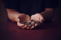 Geldmünzen auf Palme im dunklen Ton Stockbilder