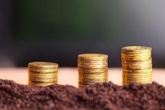 Geldmengenwachstum hundert Dollarschein, der im grünen Gras wächst Euromünzen, die vom Boden wachsen Geldmengenwachstumskonzept Stockfoto