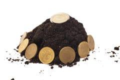 Geldmengenwachstum hundert Dollarschein, der im grünen Gras wächst Münzen, die vom Boden wachsen Lizenzfreies Stockbild