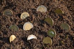 Geldmengenwachstums-Eurocent prägt das Wachsen vom Boden vorgewählt Stockfoto