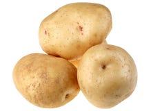 Gele aardappel Stock Foto's