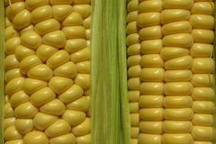 Gele achtergrond De Achtergrond van vruchten en van Groenten Stock Foto's