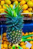 Gele ananas in de markt royalty-vrije stock foto