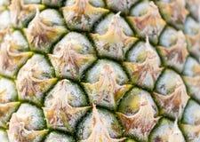 Gele ananasschors Royalty-vrije Stock Foto's