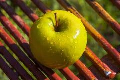 Gele appel in de zonneschijn stock afbeeldingen