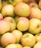 Gele appelen bij een markt. Royalty-vrije Stock Foto