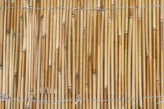 Gele bamboemuur Stock Foto's
