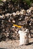 Gele bijl voor het hakken van brandhout Stock Fotografie