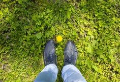 Gele bloem bij de voeten van een mens Stock Afbeelding
