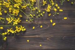 Gele bloem op houten achtergrond met ruimte met gestemde wijnoogst Royalty-vrije Stock Fotografie