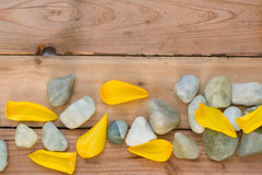 Gele bloemblaadjes en stenen Stock Foto's