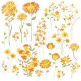 Gele Bloemen vector illustratie