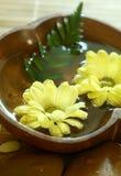 Gele bloemen die in houten kom drijven. stock fotografie