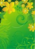 Gele bloemen en groene bladeren Stock Foto