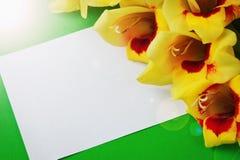 Gele bloemen op een document Royalty-vrije Stock Foto