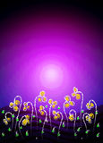 Gele bloemen op een purpere nacht Royalty-vrije Stock Afbeelding