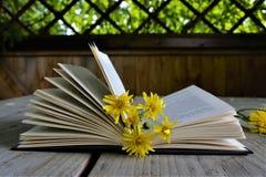 gele bloemen op het boek tussen de pagina's Royalty-vrije Stock Afbeeldingen