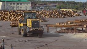Gele bulldozer met logboeken, bulldozer met logboeken bij een zaagmolen, moderne zaagmolen stock footage