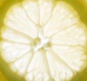 Gele citroen Royalty-vrije Stock Afbeeldingen