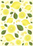 Gele citroenachtergrond Stock Foto