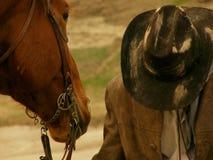 Gele de cowboyhoed van het landschapspaard wilde Royalty-vrije Stock Fotografie