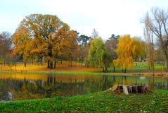 Gele de herfst Stock Afbeeldingen