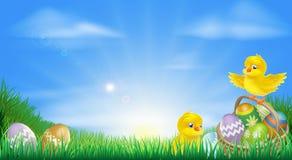 Gele de kuikens en de eierenachtergrond van Pasen Royalty-vrije Stock Foto's