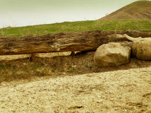 Gele de steen groene geel van het landschapslogboek Stock Afbeelding
