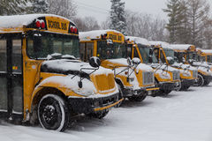 Gele die Schoolbussen in de Sneeuw worden geparkeerd stock afbeeldingen