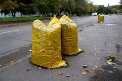 Gele die vuilniszakken met gevallen bladeren worden gevuld, die stre schoonmaken stock foto