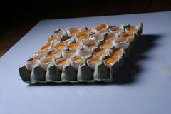 Gele dooiers, abstract beeld Stock Foto