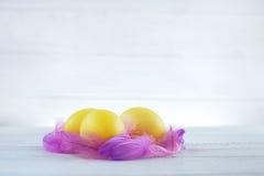 Gele eieren met veren op een witte achtergrond Het concept van Stock Afbeeldingen